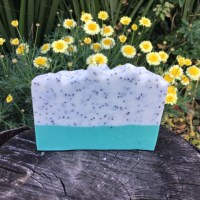Minty poppy seed scrubby cold proces soap